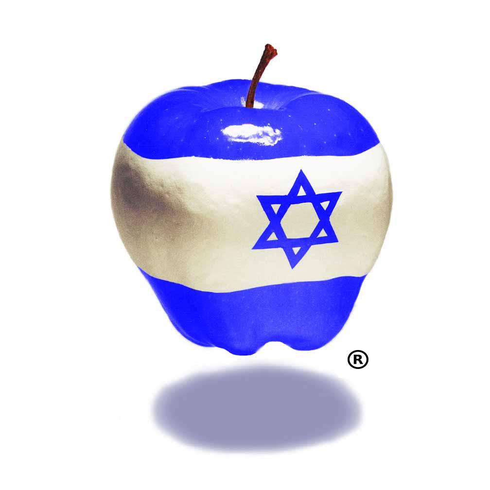 HIBM logo -registered mark- jpeg file
